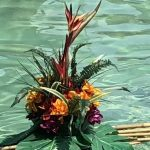 Decorations of tropical flowers floated in our pool.